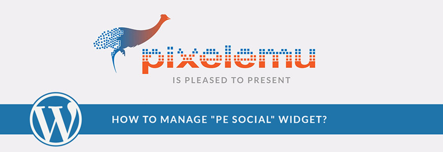How to Add Social Media Icons in WordPress theme? - PixelEmu