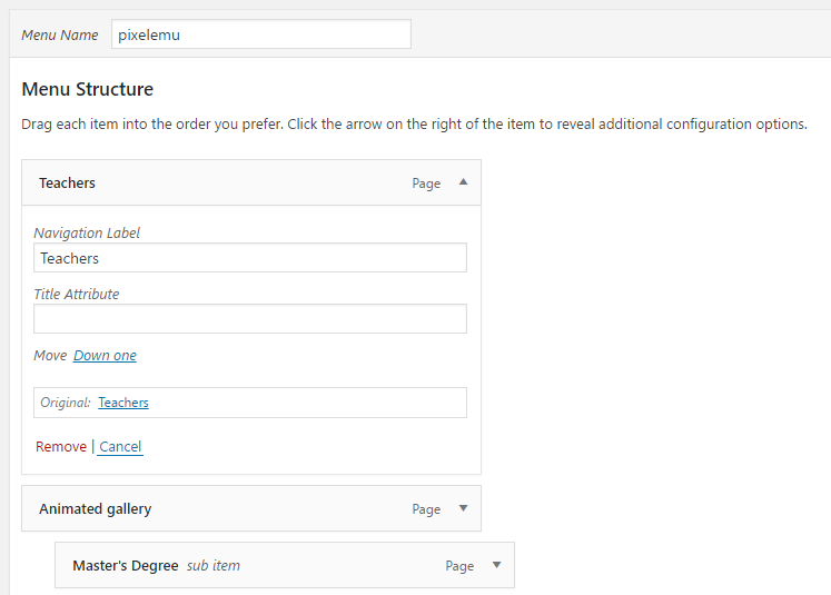 WordPress menu item settings
