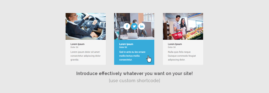 Introduce effectively whatever you want on your site! Use the custom ready made shortcode.