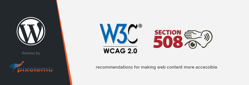 How to follow WCAG recommendations for making web content more accessible in WordPress theme.