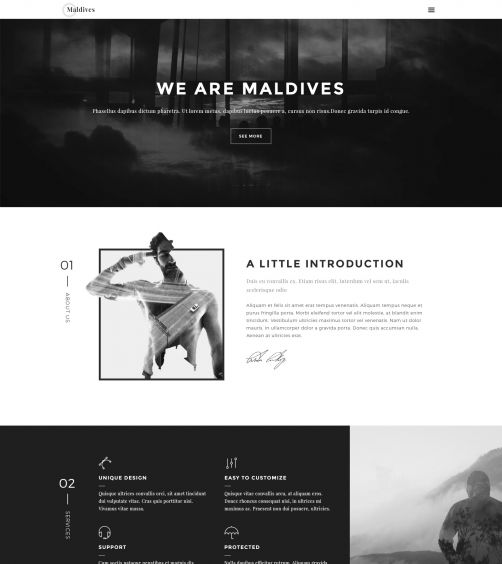 HTML Portfolio Template - PixelEmu