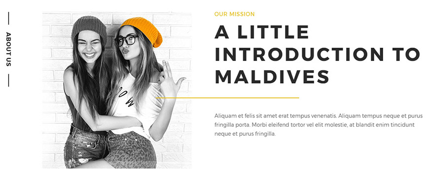 about us section in wordpress theme