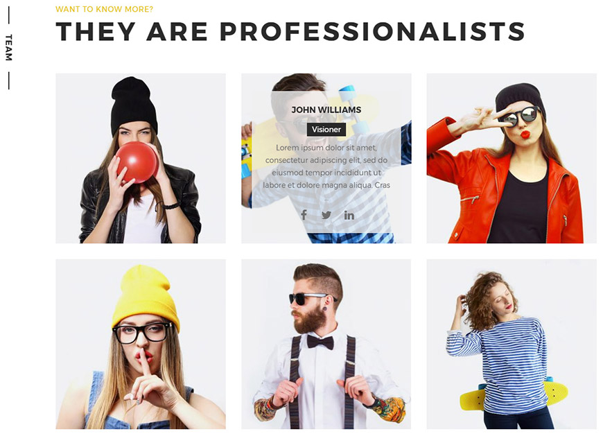 portfolio wordpress theme team
