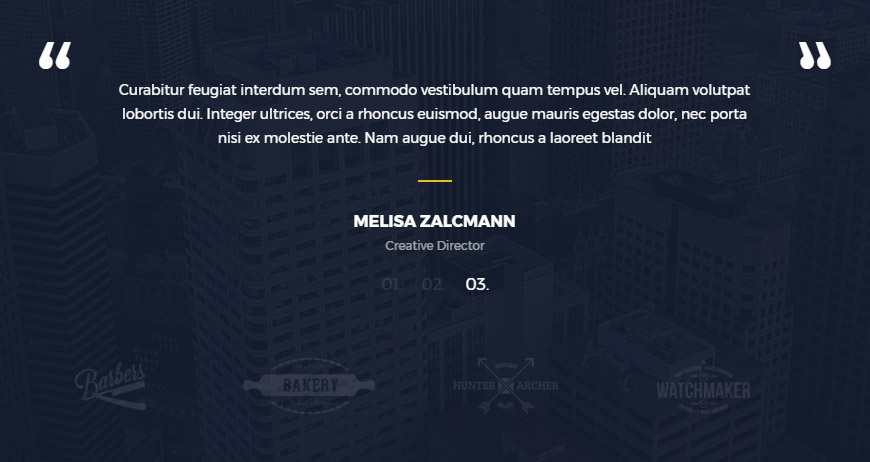 portfolio wordpress theme testimonials