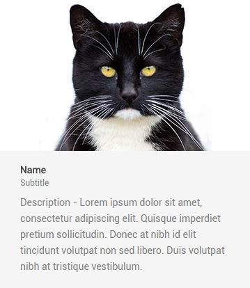 cat introduction WordPress shortcode