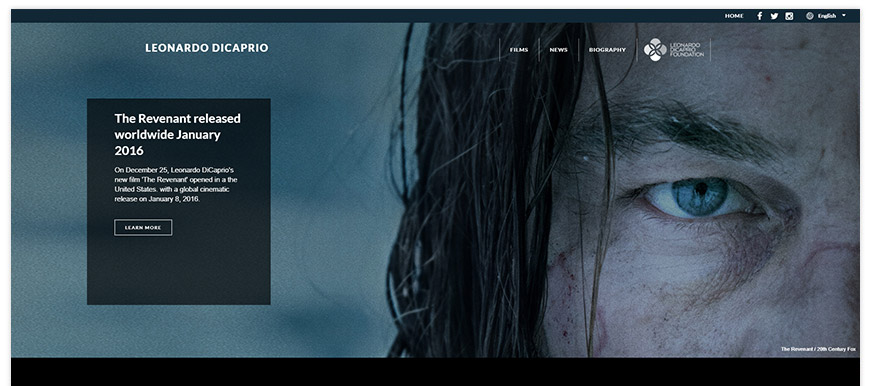 leonardo di caprio website