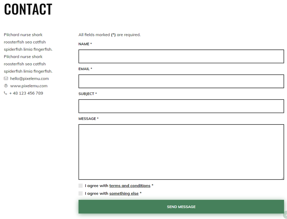 The contact form on the Eco Energy demo site looks like this: