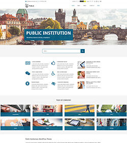 wordpress public institution theme small